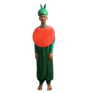 Tomato Fancy Dress For Kids