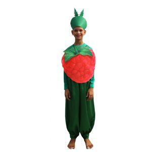 Strawberry Fruit Fancy Dress