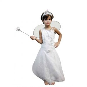 Fairy Costume – Fairytale Fancy Dresses for kids