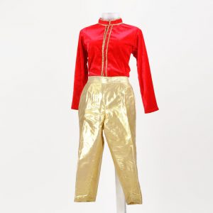 Western Dance Boy Gold and Red Full-Sleeves Jacket Pant Kids Fancy Dress Costume