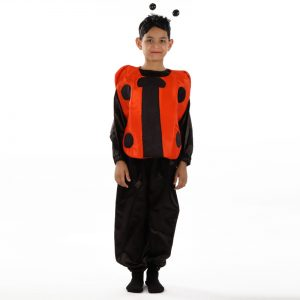 Ladybird Costume – Insect Kids Fancy Dress