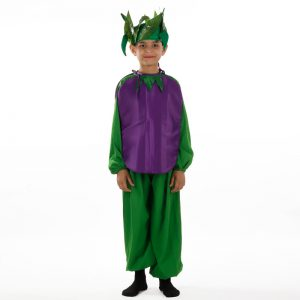 Brinjal Fancy Dress For Kids