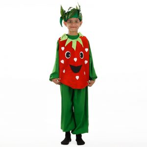 Strawberry Costume – Kids Fancy Dress