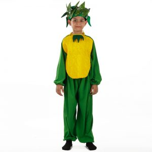 Pineapple Costume – Kids Fancy Dress