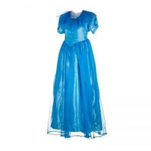 Disney Princess Costume – Fancy Dress For Girls