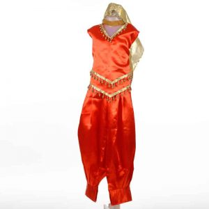 Arabian Dance Dress For Girl