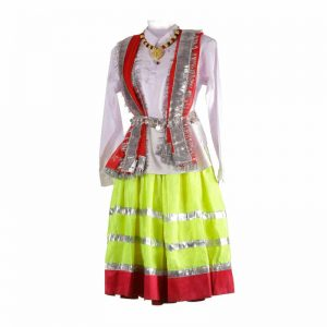 Haryanvi Girl with Jewellery Indian State Kids Fancy Dress Costume