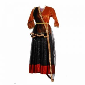 Indian Girl Dress – UP Traditional Costume