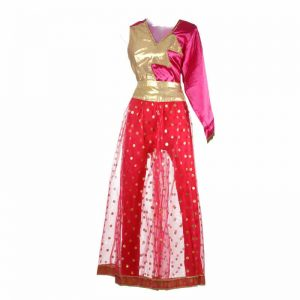 Contemporary & Indo Western Fusion Dance Girl Magenta & Gajri Top with Tights Kids Fancy Dress Costume