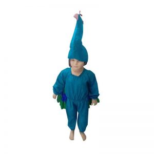 Peacock Fancy Dress – The National Bird