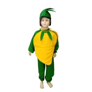 Mango Fancy Dress For Kids