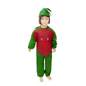 Onion Dress – Kids Fancy Costume