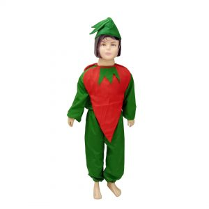 Red Chilli Fancy Dress For Kids