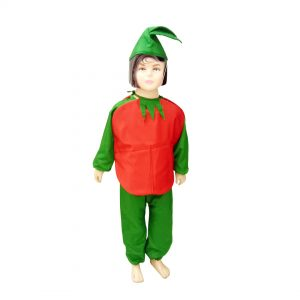 Tomato Costume – Kids Fancy Dress