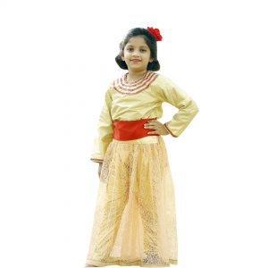 Indo Western Dance Costume for Girls