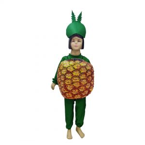 Pineapple Fancy Dress For Kids