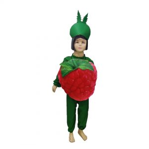 Strawberry Dress – Kids Fancy Costume