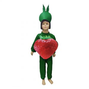Strawberry Fancy Dress