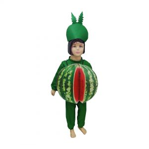 Watermelon Fancy Dress