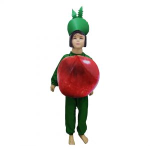 Apple Fancy Dress For Kids