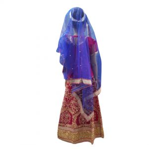 Sita Mata Fancy Dress Indian Mythology Costume