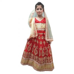 Sita Dress Up Indian Mythology Character Costume